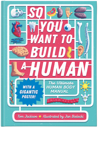 So You Want to Build a Human